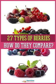 A guide to 27 different types of berries, their characteristics, taste, how to use them, and their nutritional values. Plus some random trivia too! #berries #fruit #nutrition