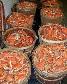 The sun is shining and the first day of Maryland crab season is finally here!  I want some now.  Where will you pick your first dozen?