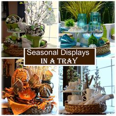 Dining Delight: How to Create Seasonal Displays in a Tray