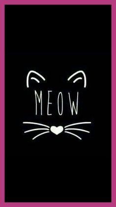 Meow cats