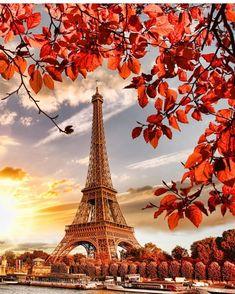 .#Autumnleaves #paris