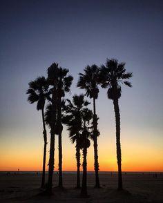 Photo // @jimmy_chin Santa Monica Boardwalk p2    #LADaze    12.17.15 #iphone #ontheroad @thephotosociety