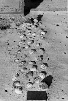 Florida Memory - Thrift plot with seashells at Macedoni Cemetery - Baker County, Florida