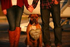 Engagement Photos with the Dog. Save the Dates