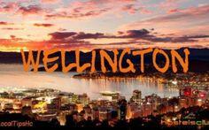 Dormire e mangiare spendendo poco a Wellington si può! Ecco che tornano i consigli dei local expert, questa volta andiamo a Wellington in Nuova Zelanda per poter scoprire dove andare a mangiare  senza spendere un capitale.  La seconda parte è dedicata a