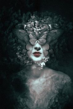 """""""She was kind and gentle, she had never noticed the ugliness and the shadows of this world. It was like always seeing though the delicate wings of a butterfly. But the winter came and the butterflies gone... And then she saw the truth and grieved deeply for the hideous lies she had seen and listened."""" K.V."""