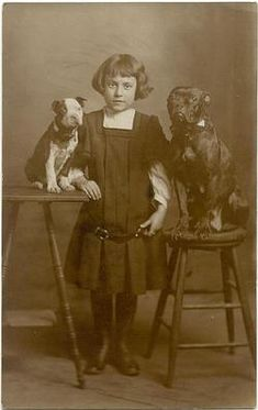 Girl and her two dogs, each on a stool.