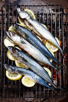 Grilled Mackerel- way to my Spanish-breed husband's heart, spirit and  soul. No recipe - justbuild a hot charcoal fire,line grill with lemon  slices to prevent sticking and season fish (gutted and cleaned) with salt  and pepper. Fish should be ready in a bout the time it takes to drink half  a glass of wine. Drizzle with olive oil before serving. Chopped  ripetomato salad andstrong vinaigrette makes afine accompaniment.