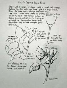 How To Draw A Simple Rose. Lesson and Worksheet. Read the lesson at the blog.