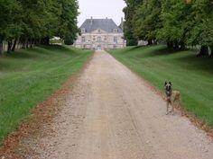 Chateau de La cheze