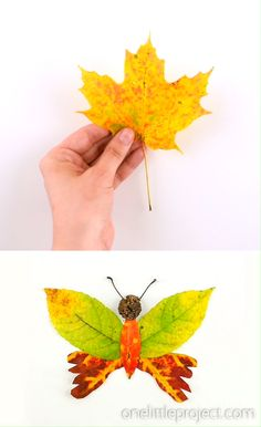 These autumn leaf butterflies and dragonflies are SO COOL and they're really easy to make! Such a great fall craft for kids using leaves, twigs and flowers! Leaf Crafts Kids, Fall Crafts For Kids, Easy Christmas Crafts, Halloween Crafts For Kids, Preschool Crafts, Easy Crafts, Art For Kids, Nature For Kids, Kids Christmas