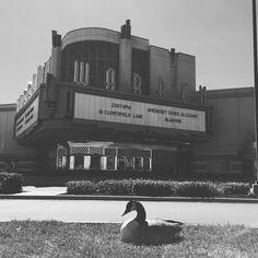 One goose ticket for #zootopia please? | #SundayFunday #ilovewichita