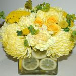 yellow spray roses, mums, carnations, yarrow, and lemons