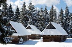 Witner #winter #landscape #snow #mountain
