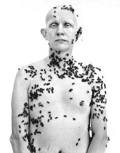 Ronald Fischer, beekeeper Davis, California 5/9/81 - Richard Avedon