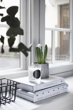 cement + books + candle + plants + window | modern simple decor