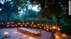 Photographic safari, team building photo safari and wildlife photography course accommodation Lake Manyara Tree Lodge, Tanzania. Africa Safari Lodge, Safari Holidays, Arusha, Hotels, Out Of Africa, Game Reserve, African Safari, Africa Travel, Lodges