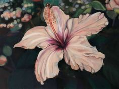 Hibiscus, Serie: Velvet Flowers, pastel on velvet, drawing, 2017, Ute Latzke