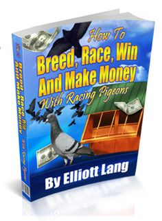 how to race pigeons large ebook