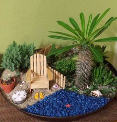 """Two Green Thumbs: """"Iraida of Puerto Rico's garden for The Great Annual Miniature Garden Contest. We loved how the cactus turns into a tree when placed in a miniature garden. The fence separates the beach from the garden. Very sweet!"""" Madagascar Palm (Pachypodium lameri) can have the spines cut off if you can't find the Inermis clultivar with less spines. Just cut new ones as they grow from the top of the """"tree."""""""
