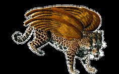 leopards4headsmerged_wings.png (319×200)