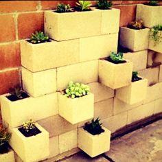 Cinder block step garden...wish we hadn't gotten rid of all of our cinder blocks now!