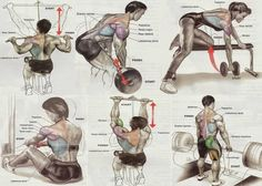 Body building, weight lifting, Morning exercise, Body rest, diet, dips, chin-ups, wings, shoulders, collarbone, biceps, triceps, thighs, Running, cycling, six pack abs, Myfashionpk.com