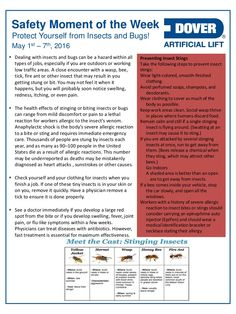 Protect Yourself from Insects and Bugs! Alberta Oil Tool's Moment of the Week Safety Moment Topics, Safety Topics, Industrial Safety, Safety Posters, Safety First, Workplace Safety, Health And Safety, Health Fitness, Lineman