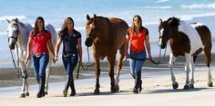 The Wilson sisters of Hukerenui are in a new television show detailing their work training wild Kaimanawa horses. From left: Kelly, Vicky, and Amanda. Cute Horses, Horse Love, Amanda Wilson, Wilson Sisters, Horse Coat Colors, Herald News, New Television, Work Train, Show Jumping