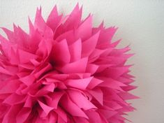 CERISE tissue paper pompom pink bachelorette party decorations wedding decorations hot pink birthday luau mexican fiesta day of the dead Eid Luau Party Decorations, Bachelorette Party Decorations, Pink Birthday, 50th Birthday Party, Tissue Flowers, Paper Flowers, Paper Pom Poms, Tissue Paper, Pink Bachelorette Party