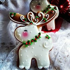 #Christmas #ornaments #keepsake #gift #gingerbread #moose #decorated #cookies #cookieart #holly