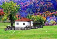 Morar junto à natureza !!! (96 pieces)
