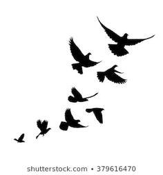 Climb a flock of birds (pigeons). Black silhouette on a white background. Simple Bird Tattoo, Black Bird Tattoo, Feather With Birds Tattoo, Bird Tattoo Men, Bird Tattoo Wrist, Bird Silhouette Tattoos, Black Silhouette, Tiny Bird Tattoos, Small Tattoos