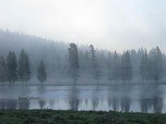Color Inspiration! Nature Photography, Landscape, River, Gray Blue Black, Misty Fog, Dramatic, Reflection, The Mighty Yellowstone