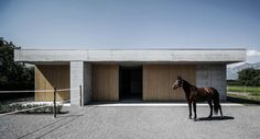 Derby Day Favorites: Equestrian Architecture from Perfect Paddocks to Stunning Stables to Awesome Arenas - Architizer