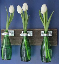 everything you need for a recycled bottle wall vase Bottles And Jars, Glass Bottles, Reuse Bottles, Bottle Candles, Empty Bottles, Small Bottles, Recycled Bottles, Bud Vases, Flower Vases