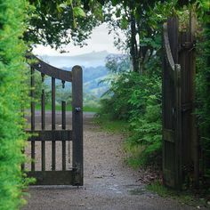 Garden pathway from gate to forest. Fine scenery to forest landscape.