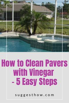 Keeping your pavers clean is an important part of paver maintenance. Dirt and grease can buildup and get into the gaps to make them look dirty. So, how do you clean pavers with vinegar? Although there are many ways, this is the best way to clean pavers efficiently. Follow these 5 steps guide for an amazing result. #homehacks #cleaning #DIY #home #cleaningwithvinegar Cleaning Pavers, Cleaning Diy, Deep Cleaning Tips, Bathroom Cleaning, Using Vinegar To Clean, How Do You Clean, Clean And Shiny, Outdoor Living, Outdoor Decor