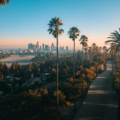 Do You Know That More Than 50 Million Tourists Visit Los Angeles Every Year? So, allow me to introduce you to Best places to visit in Los Angeles. Los Angeles Wallpaper, Places To Travel, Travel Destinations, Places To Visit, City Aesthetic, Travel Aesthetic, Night Photography, Travel Photography, Photography Tips