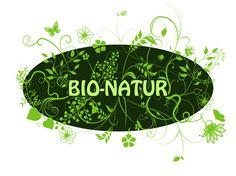 Natürliche Produkte zur Insektenabwehr Freundlich, Plant Leaves, Plants, Innovative Products, Insects, Nature, Plant, Planting, Planets