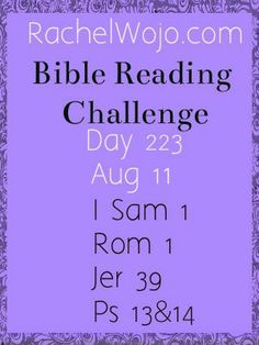 Bible Reading Challenge Day 223 -  #bibleinayear