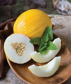 Cantaloupe Fruit Glass Ornament Italy Italian Food Melon Asia Africa Australia