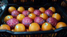 Fruit Link, Valencia Orange, Easter Eggs, Healthy Food, Packing, Organic, Fresh, Friends, Amigos