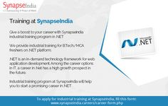Synapseindia Jobs Opportunities For Content WriterEditor Position