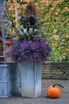 rainy fall daya centerpiece fall container in cream and blue a trio lavender and orange wood tubs Sunny fall day weedy centerpiece lots of bittersweet grapevine and gourds broom corn and eucalyptus…