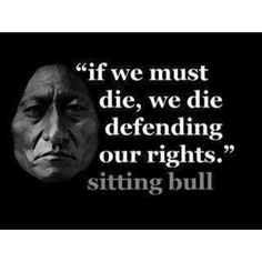 Sitting Bull ...defending it from those that stole it from you..SO sad..