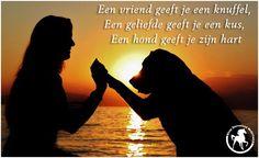 Een vriend geeft je een knuffel. Een geliefde geeft je ene kus. Een hond geeft je zijn hart ♥