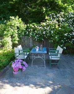 """""""En av mina trädgårdsvänner brukar säga: 'Men Jette, ska du inte ha något som blommar efter den stora rosfesten?'"""" Men det ska hon helt bestämt ikke! Den yviga klätterrosen Venusta Pendula sveper in staketet vid en av trädgårdens uteplatser."""