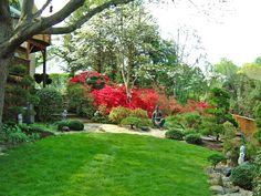 Japanese Garden.  Backyard landscape design  By Lee's Oriental Landscape Art