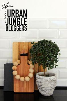 Urban Jungle Bloggers: one plant, three stylings via Jenn Adores
